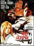 nuit_iguane