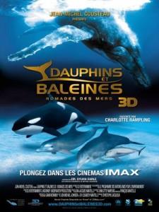 dauphins-et-baleines-affiche1