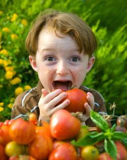 http://toutelaculture.com/wp-content/uploads/2011/03/enfant-bio.jpg