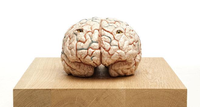 Jan Fabre ouvre ses blessures cérébrales galerie Templon
