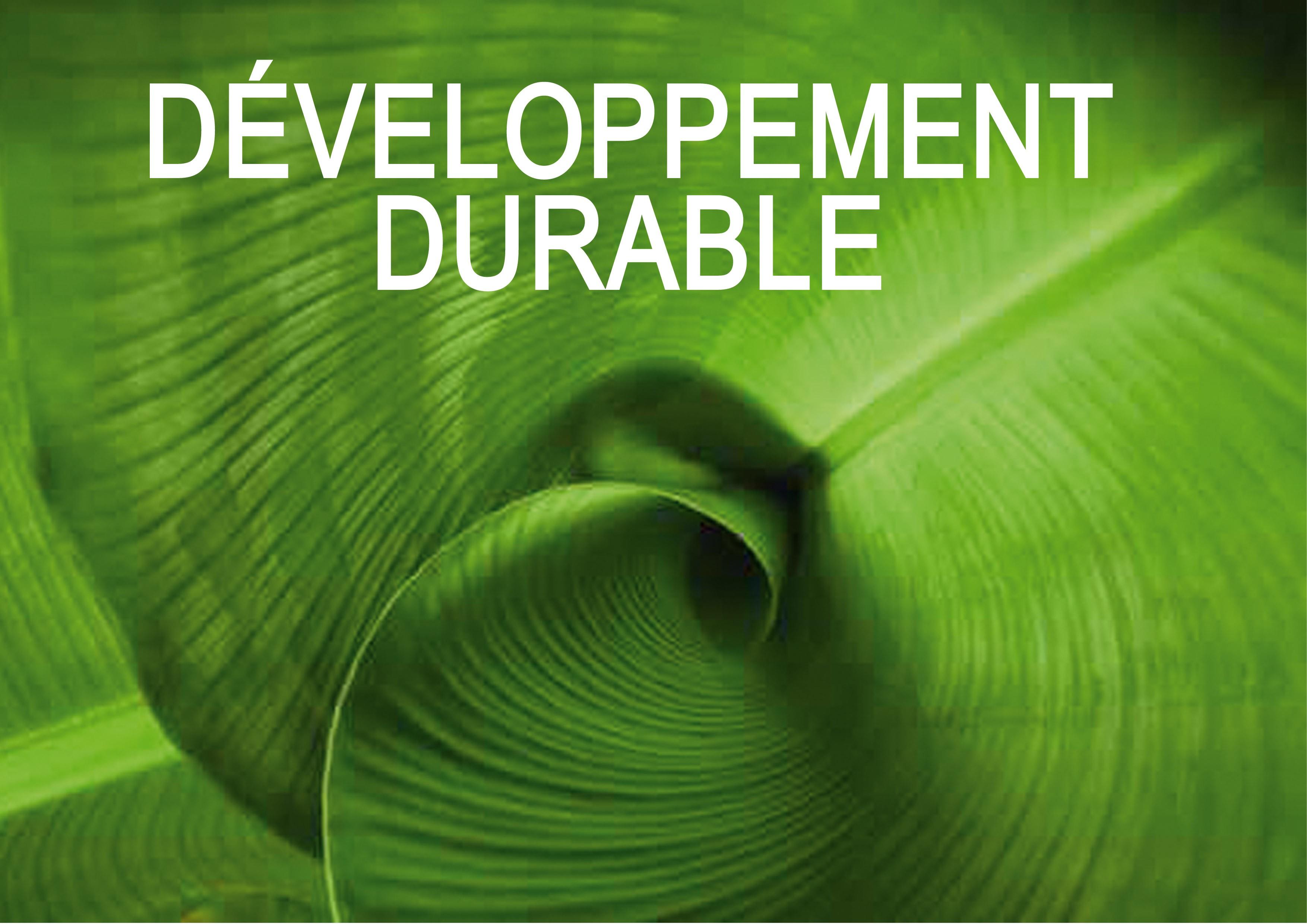 developpement-durable