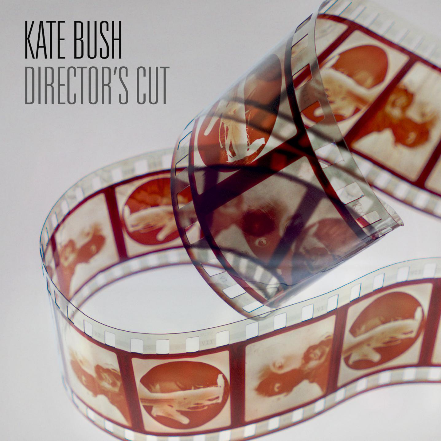 Director's Cut, nouvel album de Kate Bush
