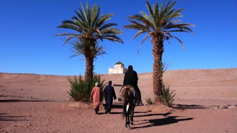 Le 6e panorama des cinémas du Maghreb commence aujourd'hui avec La Mosquée de Daoud Aoulad-Syad