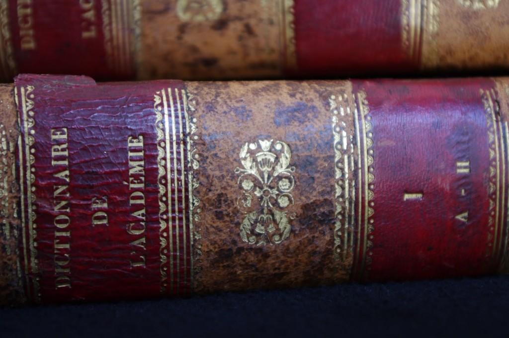 Le dictionnaire de l'Académie française, garant du bon usage, s'enrichit de 4.000 mots nouveaux