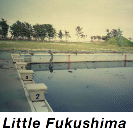 Little Fukushima : un feu qui continue à bruler