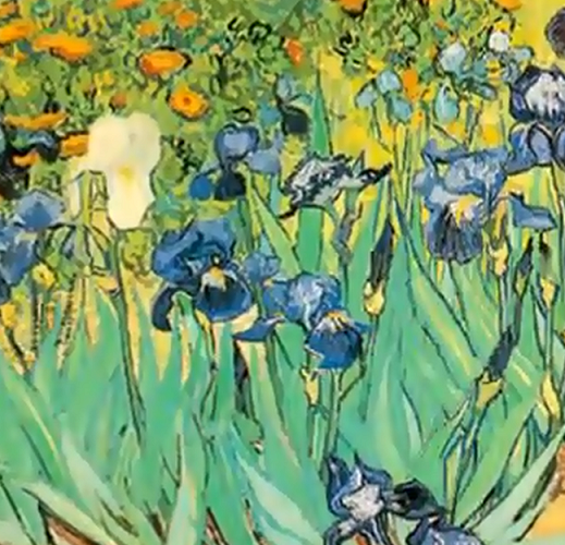 Après le cas Vinci, une nature morte attribuée à Van Gogh aux Pays Bas
