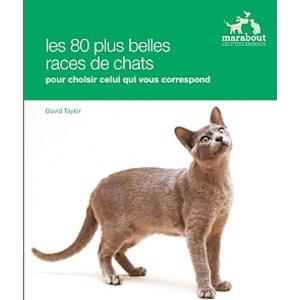 Les 80 plus belles races de chats