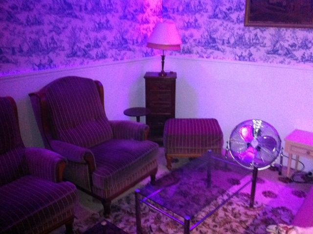 Le Dandy, un club façonné comme un appartement pour vos folles nuits de Pigalle