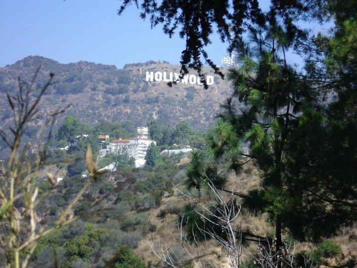 Mais où est passé le projet «Hollywood-sur-Garonne» ?