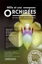 Le Jardin des Plantes expose Mille et une orchidées ...