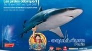 OP-Aquarium_-Large_0