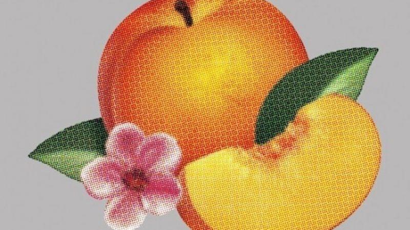 Le dernier album de Phoenix en écoute sur Apple