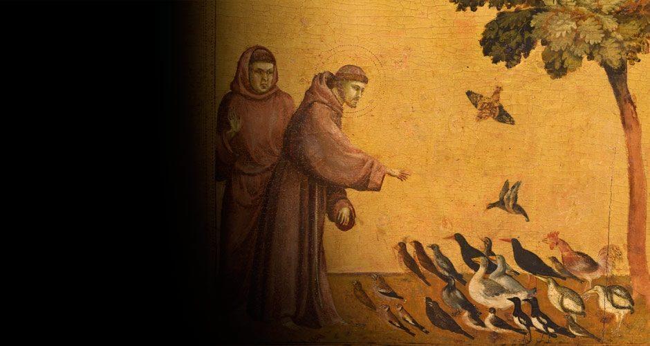 Giotto fait entrer la lumière au Louvre