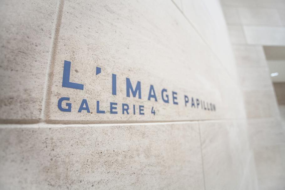 L'image-papillon : un florilège d'artistes contemporains tissent des fils de mémoire au MUDAM