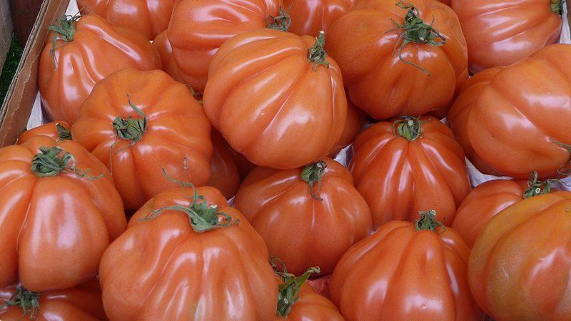 La recette de Claude : Tatin à la tomate, à la chapelure et aux anchois