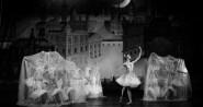 casse noisette saint-petersbourg ballet. Théâtre des champs-Elysées