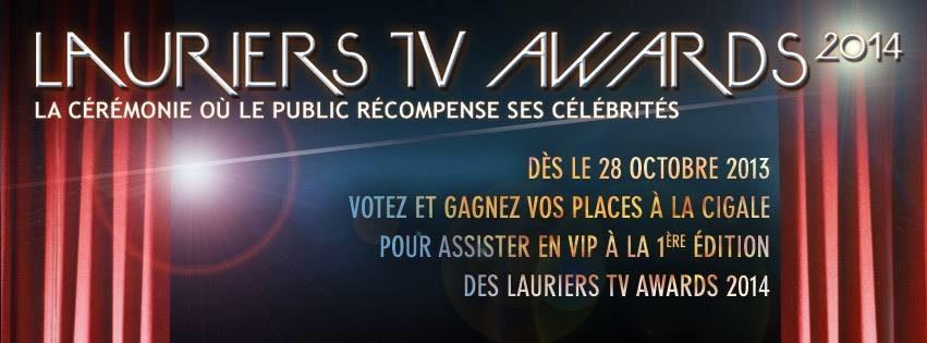 Les lauriers TV awards : quand le petit écran se récompense démocratiquement via dailymotion