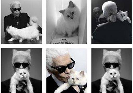 Choupette Lagerfeld signe une collection pour Shu Uemura
