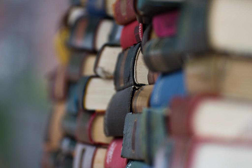 [Les idées cadeaux] des livres, encore des livres !