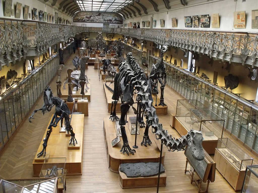 Grenoble Natural History Museum