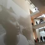 bjork exhibit 6