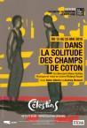 Dans-la-solitude-des-champs-de-coton_2015_ressourceOriginale