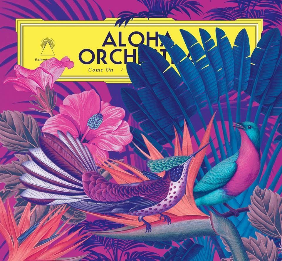[Exclu] Le clip de « The Call » d'Aloha Orchestra