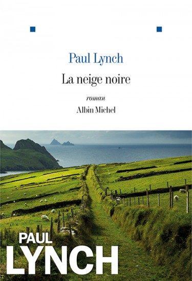 «La Neige noire» de Paul Lynch : un roman âpre et tourmenté chez Albin Michel