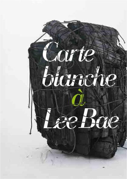 Le Musée Guimet offre une carte blanche Lee Bae jusqu'au 25 janvier 2016