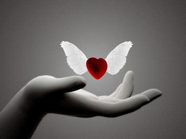 Le toucher : ces mots de l'amour ou la beauté à l' hôpital…