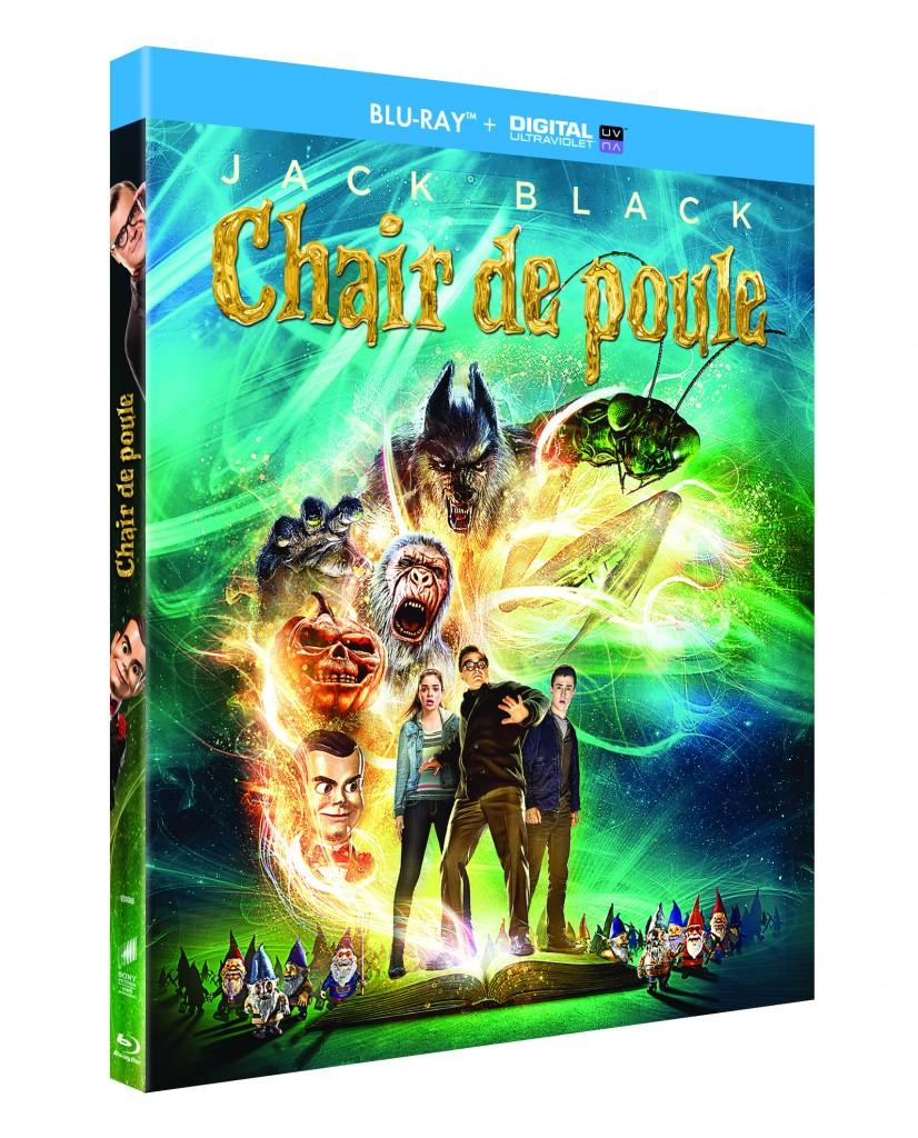 Gagnez 2 Blu-Ray ou 1DVD de « Chair de Poule »