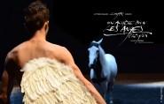 theatre-equestre-zingaro-on-acheve-bien-les-anges-elegies