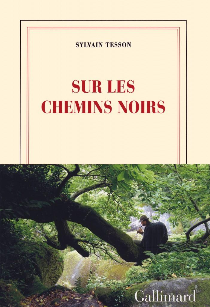 «Sur les chemins noirs» de Sylvain Tesson : un retour à la vie