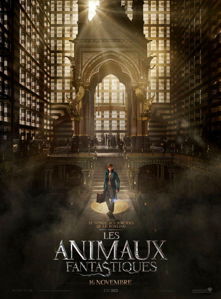 Box-office France semaine : 1,4 million d'entrées pour Les Animaux Fantastiques (spin-off d'Harry Potter)