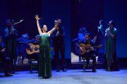 flamenco-v-pontet