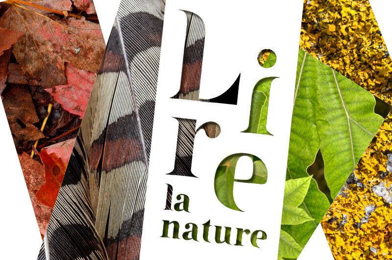La Fondation Sommer lance la première édition du Salon Lire la nature
