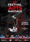 affiche-festival-des-arts-martiaux-2017