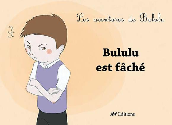 «Bululu est fâché», un nouvel épisode dans la vie d'un petit garçon de famille recomposée