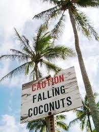 [Ban d'essai] Tous marteaux d'eau de coco