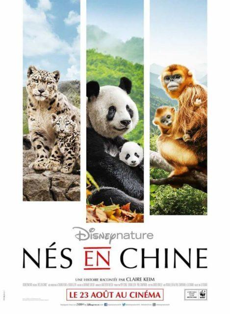 «Nés en Chine», un documentaire Disney nature à vous couper le souffle !