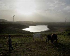 Pascal Maitre, Ferme éolienne d'Ashegoda. Série « Quand l'Afrique s'éclairera » © Pascal Maitre/Cosmos