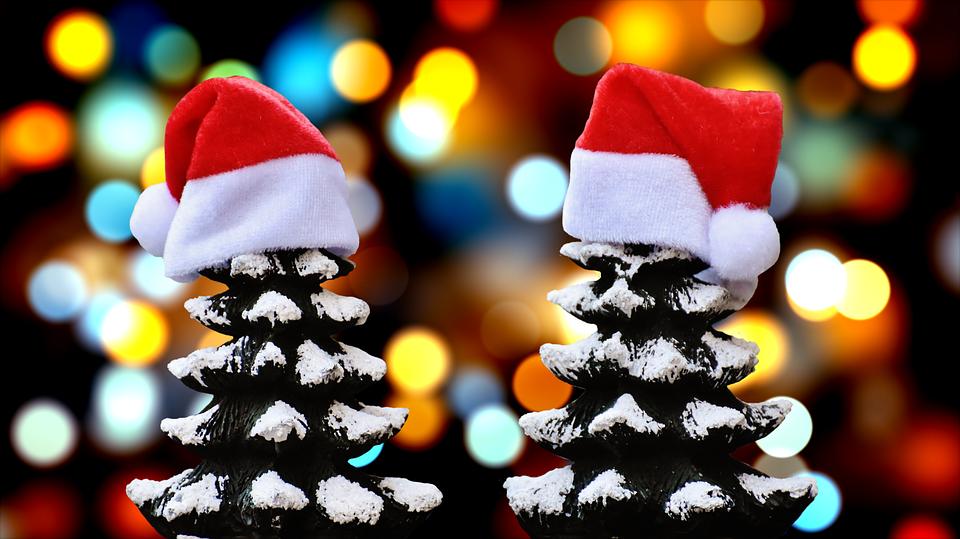 L'Agenda culture des vacances de Noël