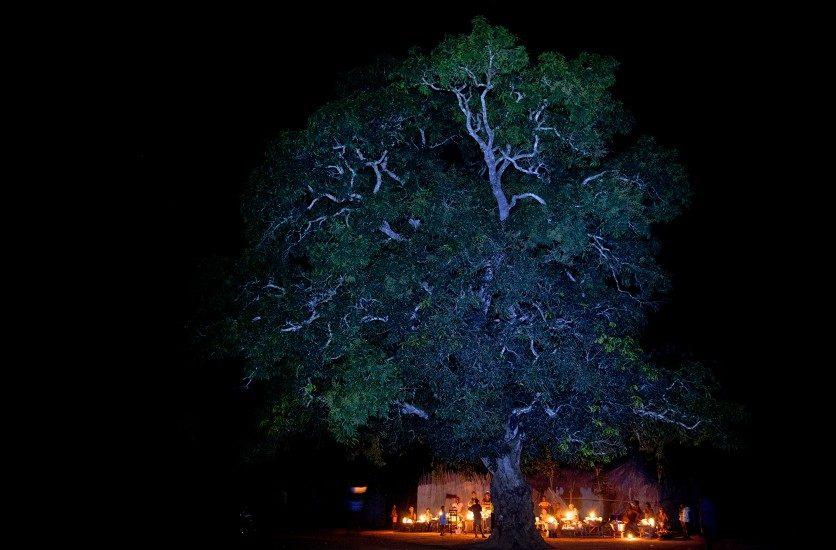 Pascal Maitre, «Quand l'Afrique s'éclairera», à la Maison Européenne de la Photographie