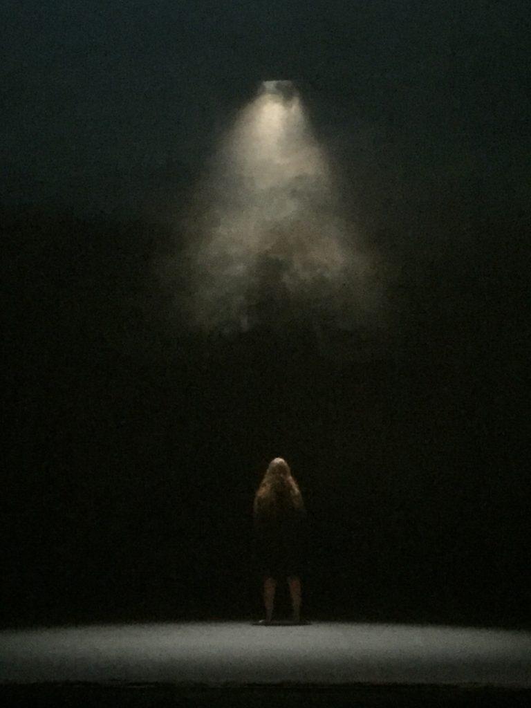 Je suis la bête: l'adaptation poignante du roman d'Anne Sibran par Julie Delille