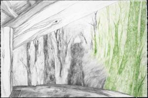Le Mirador 2015 130x80 cm mine graphite, crayon de couleur sur papier Moulin du Gué 300 g Réalisé avec le soutien de la Fondation François Sommer