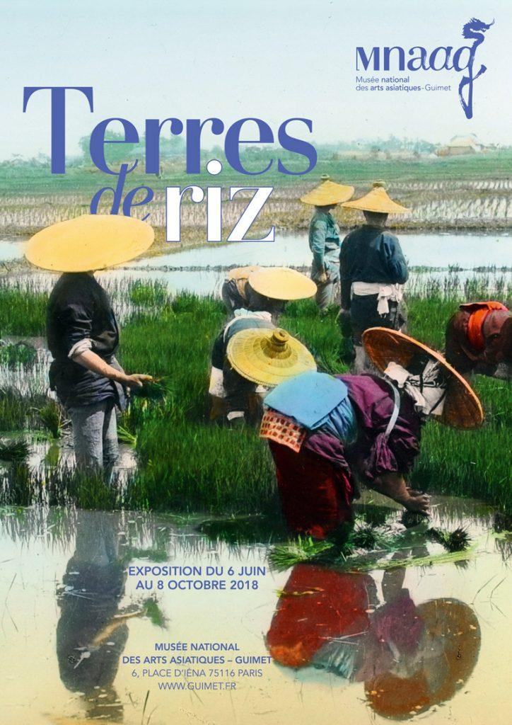 «Terres de riz», aux racines des cultures d'Asie