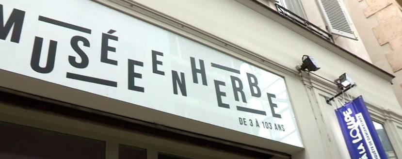 Le musée en Herbe menacé de fermeture après un effondrement