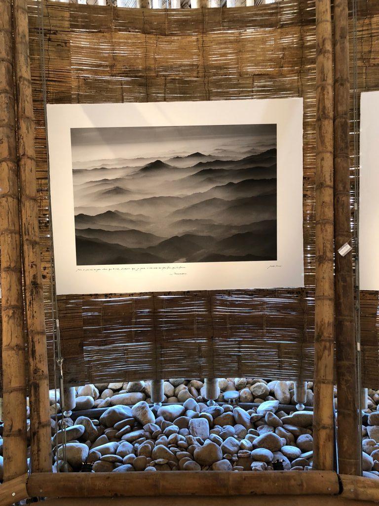 Les rencontres photographique d'arles 2018