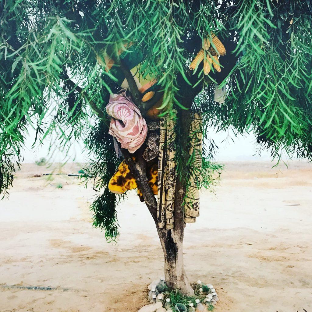 """""""Quelque part dans le désert"""": les migrants dans l'objectif de l'Israëlien Ron Amir au MAM"""