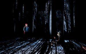 «La petite fille qui disait non», le conte féministe de Carole Thibaut réhabilite le loup
